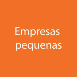 Empresas Pequenas