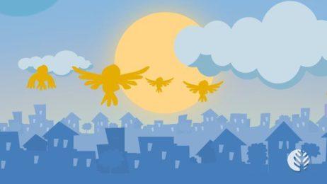 Vídeo educativo em animação 2D e motion graphics