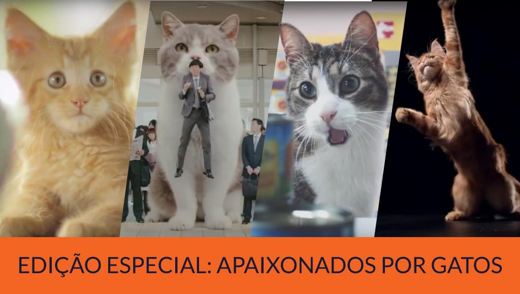 Loucos por gatos: 11 Comerciais de TV campeões em criatividade e fofura